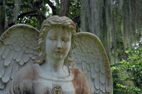 Closeup of an angel statue with oak trees and Spanish moss in the background.