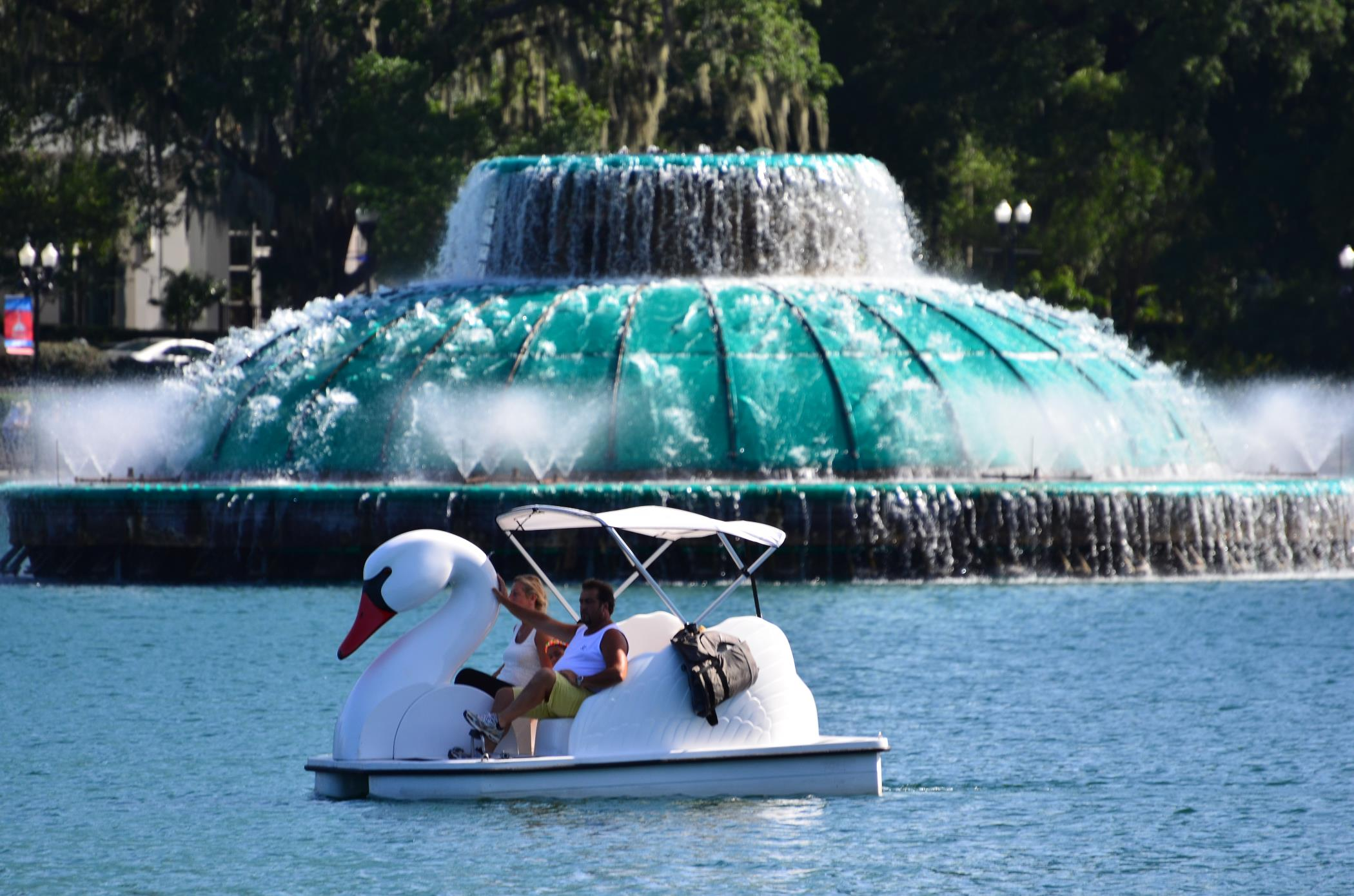 Picture of Lake Eola Swan Boat