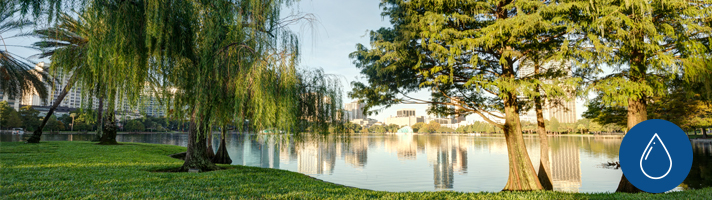 Scenic greenery around Lake Eola Park.