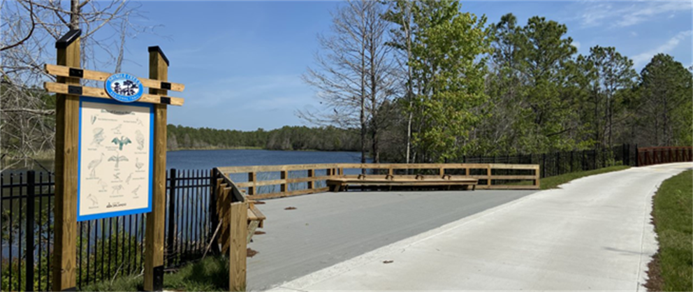 A view of Lake Fran from the Shingle Creek Trail.