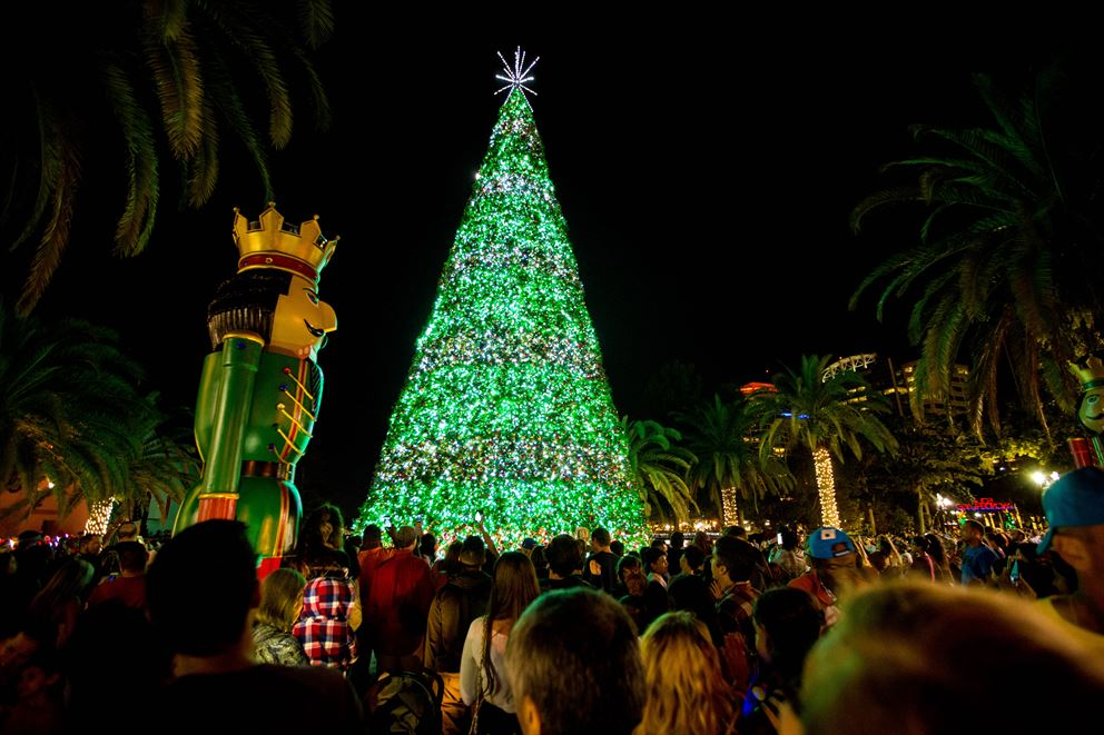 2019 Tree Lighting Celebration City Of Orlando