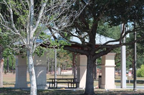 Pavilion covering picnic tables, surrounded by trees.
